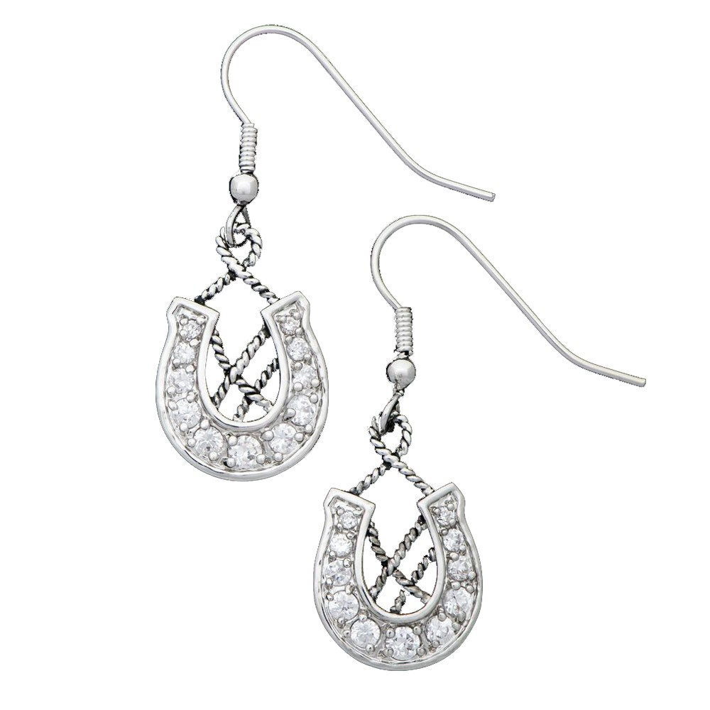 Vintage Charm Making Your Own Way Earrings (ER1328CZ)