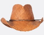 Shady Brady Straw Hat