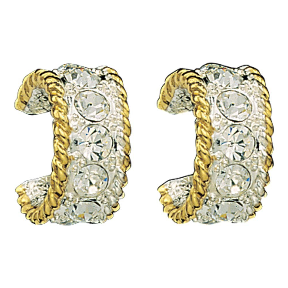 Crystal Shine in Gold Small Hoop Earrings (ER61133)