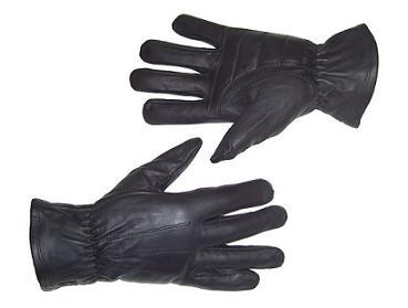 Basic Riding Gloves